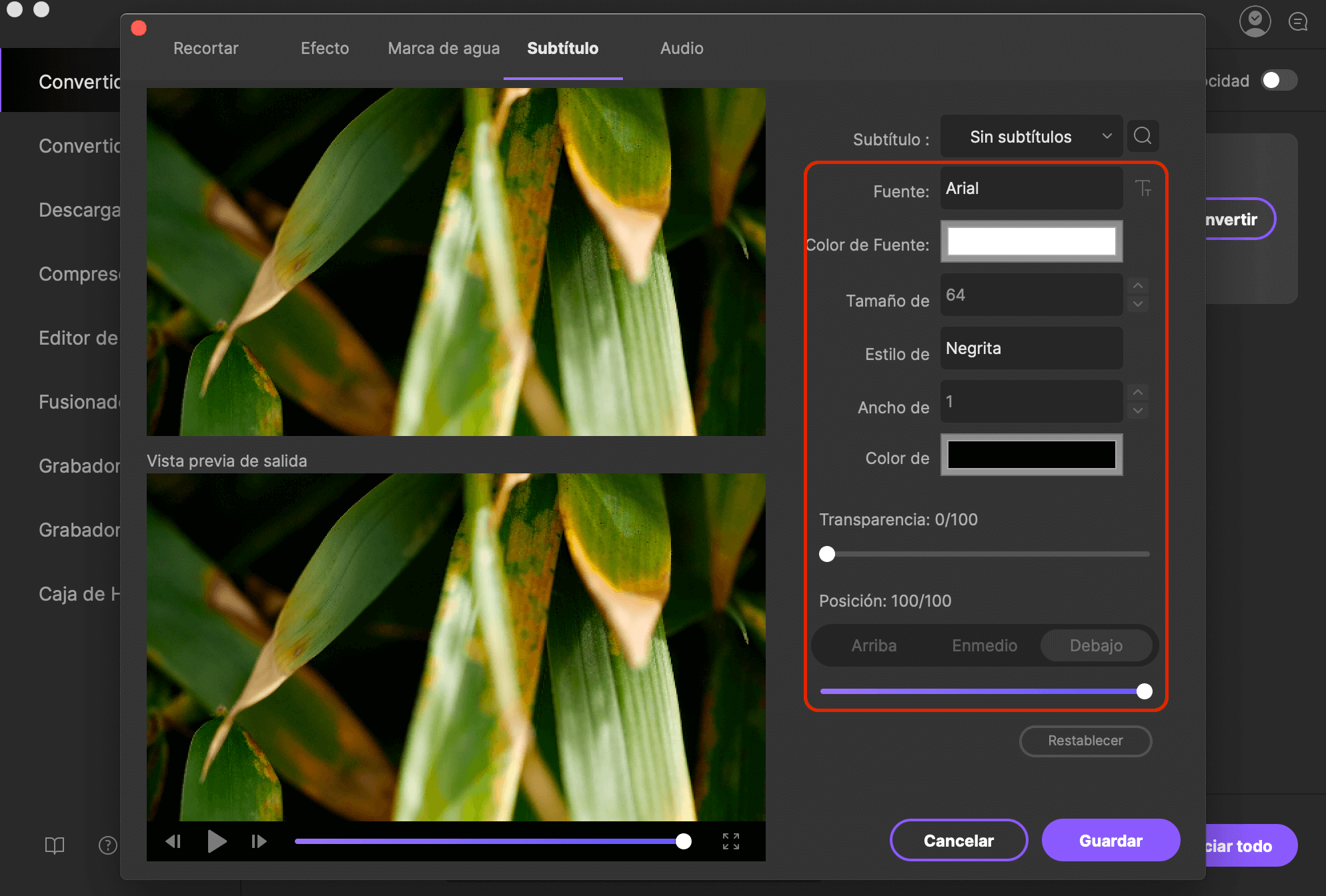 Find video content with accessibility features