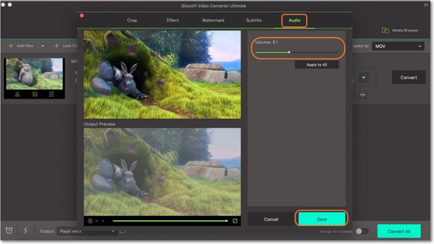adjust volume of video
