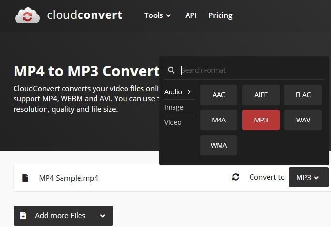 select mp3 output format