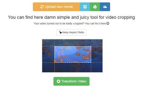 Crop MP4 Online with VideoCrop