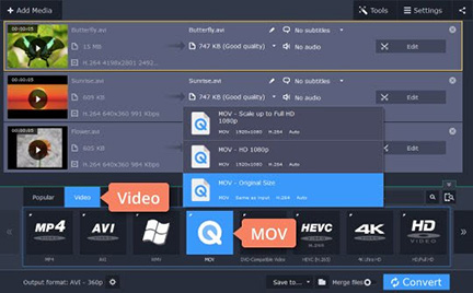How to Convert AVI to MOV with Movavi Alternative